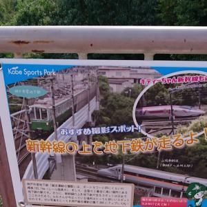 お天気が良いので ・・・ トンネルからの新幹線を