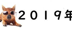 2019年 明けましておめでとうございます♪