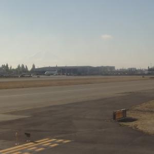 シアトルタコマ国際空港、マウントレーニア現る
