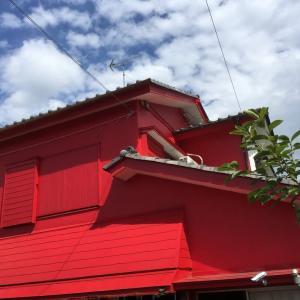 梅雨入りして 屋上の作業をしつつ 茨城県 牛久市