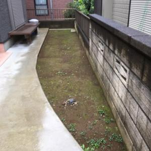 水捌けの悪い 庭の工事 打ち合わせ 茨城県 守谷市