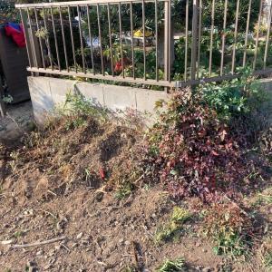 茨城県 守谷市 車庫と 庭の手入れ