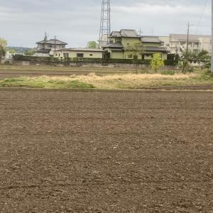 2021年度 除草作業がスタート 茨城県 利根町