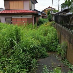 千葉県 我孫子市 小雨の中の除草作業
