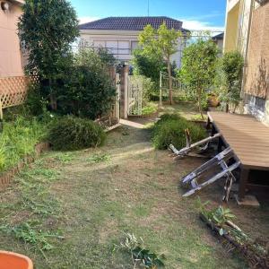 庭木を思い切って 刈り込む 茨城県 龍ケ崎市