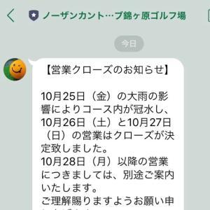 2019/10/27,28〜 脱毛始まる/指立伏せ始める