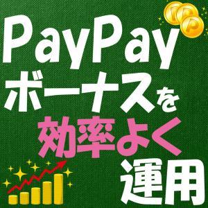 ペイペイ(PayPay)ボーナスで投資を簡単にする方法
