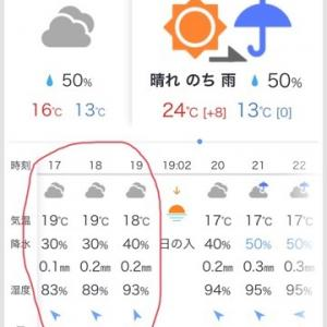 お天気アプリ、どれが当たるか雑に検証 IN 椿荘オートキャンプ場