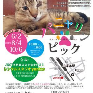 週末はパニャリンピック、障害猫さんの譲渡会です(*^^*)