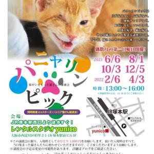 本日、パニャリンピックー障害猫さんの譲渡会です。