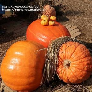 秋色ファームの収穫祭*ハロウィン