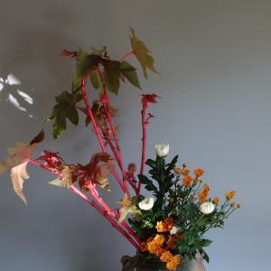 唐胡麻 (ベニひま)の生け花