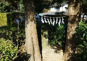 今宮大杉神社と水神社