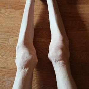 脚 体型記録