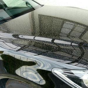 ボディのシミが気になる。トヨタで洗車してもらったら、金額はいくら? そしてその結果。