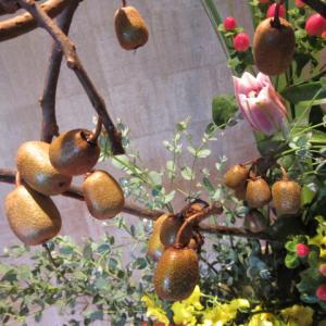 蔓もの花材が目白押し