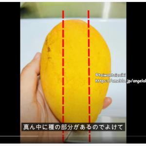 You Tubeでマンゴーの切り方実践!