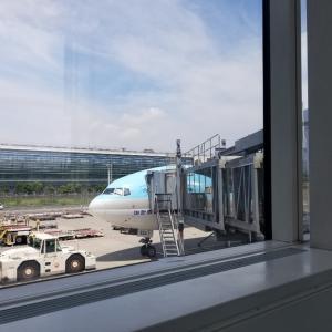 8月ソウル♪大韓航空機内食はフルーツミールをオーダー