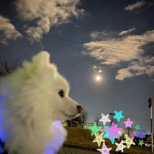 昨日の満月♪