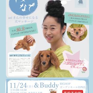 千葉県印西市で『イヌなで』セミナー開催します。