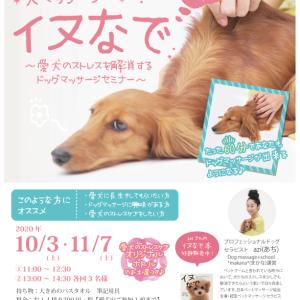 【10月3日(土)】立川にて『イヌなで』セミナー開催決定