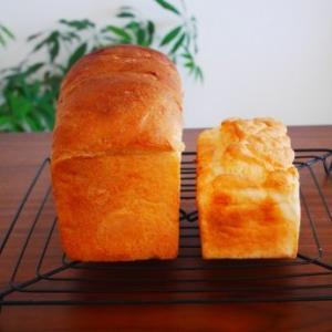 小麦のパンと米粉のパン