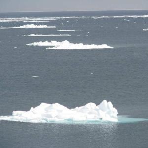 流氷・・稚内・猿払・宗谷海峡へ