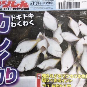 5月28日発売!釣り新聞・・