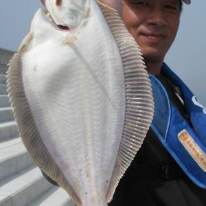 港や海岸での釣りの注意点