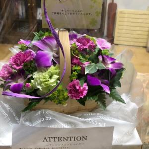 今日チェリーの誕生日に動物病院からお花