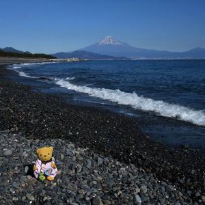 日本海でなく東海