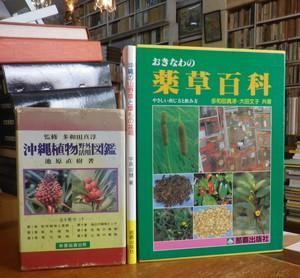 おきなわの薬草百科・沖縄植物野外活用図鑑・沖縄の山野草と草もの盆栽