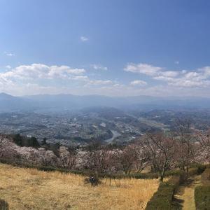 美の山(蓑山)に登る