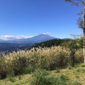 高松山に登る