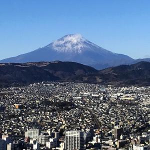 弘法山リベンジ登山