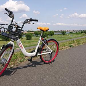 PiPPAで荒川土手を自転車ツーリング