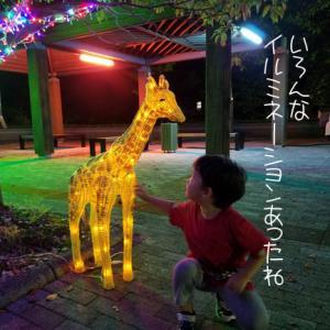 夜のとくしま動物園でおソラに激似の…
