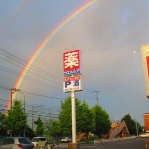 誕生61周年 虹