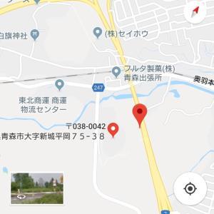 11月12日目撃情報 青森で迷子のイングリッシュポインター