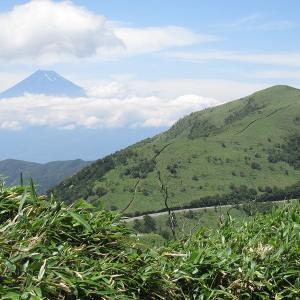 伊豆の旅・ハイキング -2(達磨山)