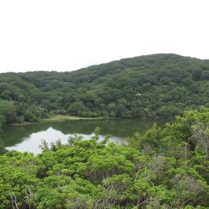 伊豆の旅・ハイキング -3(八丁池)