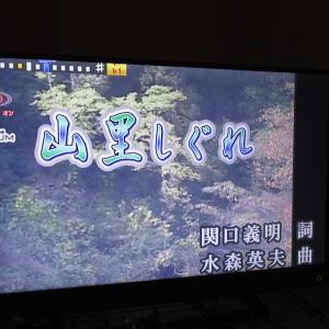 カラオケ会(山)