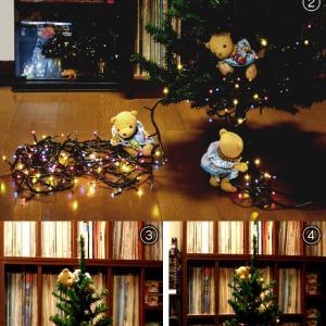 今日はクリスマスツリーの日