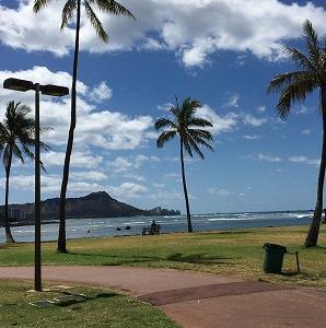「秋ハワイ」も中止するよ