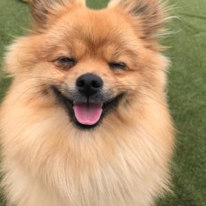 beaming smile!