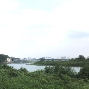 多摩川の隠れ処的な場所