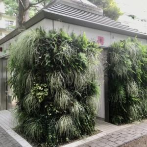 壁面トイレ&古民家カフェ