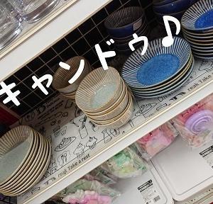 素敵なお皿 キャンドゥで見つけたよ