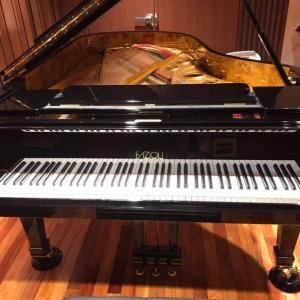 ⑤【動画あり】ピアノ天才小5 少年 10月2日のピアノコンサートに出演!