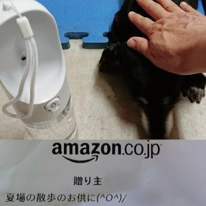 ☆愛犬チビの水筒頂きました!